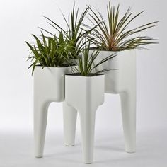 Planting System By Hurbz, Temple & Webster