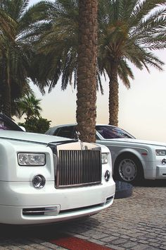 What's more luxurious than a Rolls Royce Phantom? Two Rolls Royce Phantom 💎 My Dream Car, Dream Cars, Supercars, Voiture Rolls Royce, White Rolls Royce, Rolls Royce Wallpaper, Rolls Royce Motor Cars, Rolls Royce Phantom, Billionaire Lifestyle