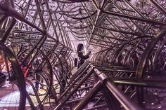 Ai Weiwei, Forever Bicycles