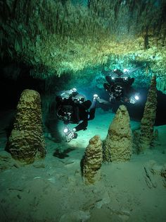 cave-diving the underwater tunnels of Dos Ojos Cave System, Riviera Maya, Mexico Underwater Caves, Underwater Photos, Cave Diving, Scuba Diving, Cozumel, Riviera Maya Mexico, Snorkeling, Under The Sea, Beautiful World