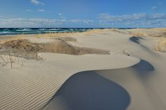 """""""Singing Sands"""" Ludington State Park - Ludington, Michigan The sand is soft and…"""