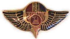 Special Forces Beret Badge. IRAQ