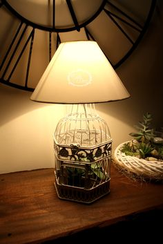White living cage lamp with Aloe vera and succulents by Eagle Decor. Eagle Decor is a hungarian designer who loves the handmade, eco friendly products and  plants!