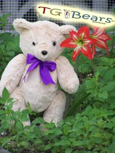 Theodore Bear is a classic #handmade teddy bear with a ribbon. He has a soft, almost luxurious fur.