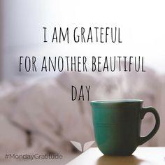 3cba46cd03f9d3d2828224d44193b847--gratitude-jar-gratitude-quotes.jpg