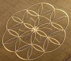 """Résultat de recherche d'images pour """"crop circle"""""""
