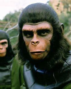 Chimpanzee, Orangutan, Fantasy Movies, Sci Fi Fantasy, Movie Makeup, Mountain Gorilla, Planet Of The Apes, Dark Gothic, Photo Galleries