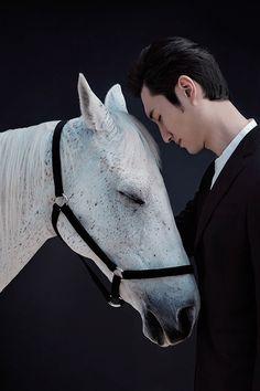 China Life Photography - Horse Year3