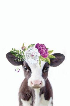Cute Baby Cow, Baby Cows, Cute Cows, Cute Baby Animals, Wild Animals, Cow Wallpaper, Animal Wallpaper, Baby Animal Drawings, Cute Drawings