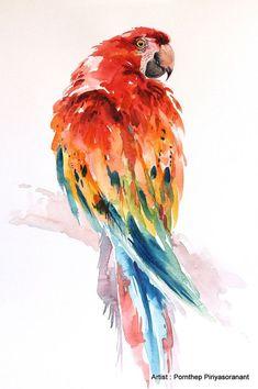 Uccello del pappagallo Ara, pittura, arte dell
