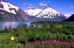 Alaska where my grandmother used to live it was sooo pretty and in the summer it wasn't that cold  (been)