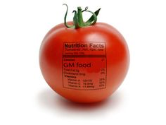 """""""GM foods are not proven safe. Why not just label them and let the consumer decide?"""" is a common thread on food blogs. """"They must be kowtowing to the GMO lobby."""" That's what has been characterized as the liberal position: the consumer's right to know. Many activist groups lobbying for labeling cite a New York Times poll that 93 percent of Americans support it. So why do the leading independent science organizations in the US and the country's top liberal news publications oppose mandatory…"""