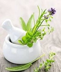 "In this article, let's talk about this question, ""Where to find herb medicine to reverse Kidney Failure and Nephritis?"""