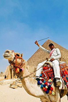 A camel is a popular way to see the great Pyramids of Giza, Egypt