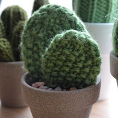 cactus breien | http://www.woonschrift.nl/cactus-breien/