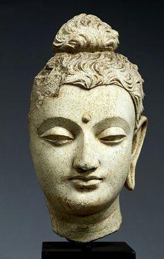 Head of Buddha. Stucco  Hadda, Afghanistan. H. 25.7. 3rd - 5th century  TC411    仏頭(ぶっとう)  1個 ストゥッコ アフガニスタン・ハッダ 高25.7 3-5世紀