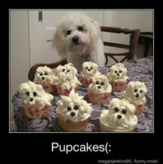 Pupcakes.  This is exactly how my grandson says it!  lmao!!!