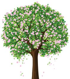 Spring Tree PNG Clipart