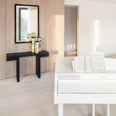 KNOF design Luxury European Penthouse Eastern Europe, 2014
