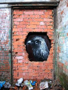 Street Art. By Roa, in Ghent,