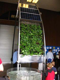 Google Image Result for http://media.treehugger.com/assets/images/2011/10/kids-sustainability-solar.jpg