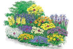 Eine sommerliche Rabatte - Stauden | Blumengarten - Gartenpraxis - Mein Garten - gartenflora.de