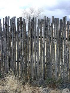 Unofficial Taos: Coyote Fence Would look good around a pool for a rustic look instead of the normal picket fencing