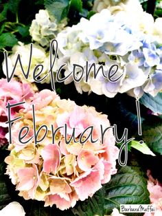 Welcome #February! Because is the best month of the year!