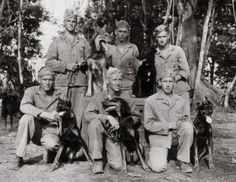 WWII Doberman Military War K9 Heroes