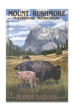 Mount Rushmore National Memorial, South Dakota - Bison Scene - Lantern Press Artwork (8x12 Acrylic Wall Art Gallery Quality), Multi