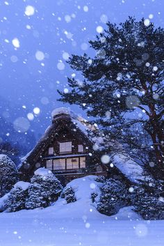 Becoming more and more intrigued by the idea of visiting Japan in the winter. Snow in Historic Villages of Shirakawa-go, Gifu, Japan Winter Szenen, I Love Winter, Winter Magic, Winter Christmas, Winter Travel, Snow Scenes, Winter Beauty, Japan Travel, Belle Photo