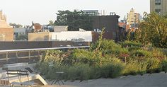 The Highline | The ideal spot to hit up after the galleries, this elevated public park that runs from the Meatpacking District all the way to Midtown is perhaps the best thing to happen to the city's landscape in decades.