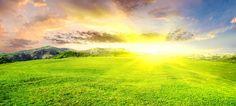 Shiny Sun Over Grass Field HD Desktop Wallpaper Jon Gordon, Lullaby Songs, Field Wallpaper, Relaxation Meditation, Grass Field, Dna Test, How Beautiful, Beautiful Sunrise, Reiki