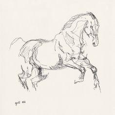 Original tinta y pluma de dibujo de un caballo en por benedictegele Horse Drawings, Animal Drawings, Art Drawings, Animal Sketches, Art Sketches, Horse Sketch, Anatomy Art, Equine Art, Horse Art