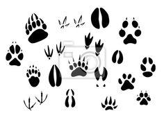 Sticker Animal footprints s