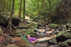 Hammocks over the creek in stunning rainforest - Crystal Creek Rainforest Retreat Honeymoon Planning, Best Honeymoon, Honeymoon Ideas, Romantic Destinations, Honeymoon Destinations, Rainforest Locations, Australia Holidays, Retreat Ideas, Perfect Couple