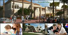 Downtown Doral Collage3