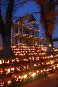 "autumnciders: "" The Pumpkin House - Kinova, West Virginia "" Happy Halloween! Spooky Halloween, Fröhliches Halloween, Holidays Halloween, Halloween Pumpkins, Outdoor Halloween, Vintage Halloween, Halloween Labels, Halloween Quotes, Halloween Party Poster"