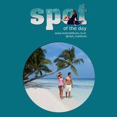 SPOT OF THE DAY - 빌라벤두 아일랜드 리조트&스파  / Vilamendhoo Island Resort & Spa (2015년 6월 4일) #빌라벤두아일랜드리조트  #spotoftheday #리얼몰디브 #몰디브 #Maldives #몰디브여행사 #몰디브리조트 #traveling