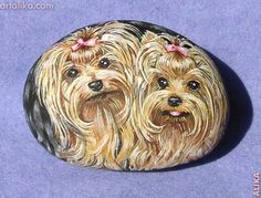 Hand painted rocks: dogs: Yorkshire Terriers