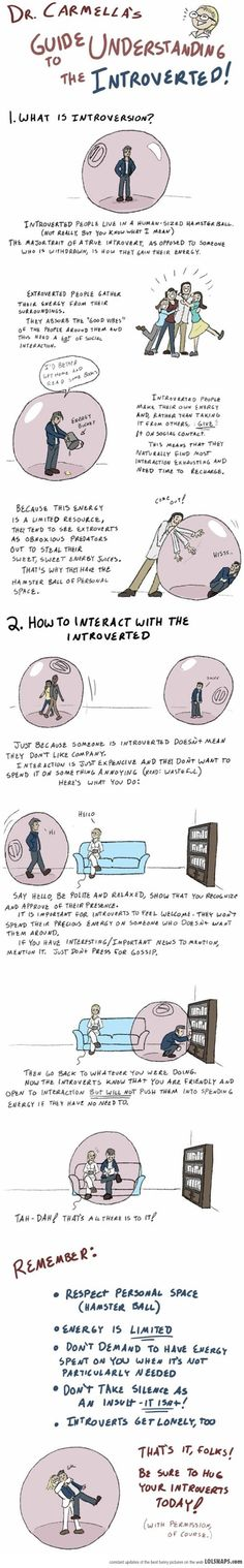 Guide To Understanding The Introverted... {Just don't forget to put a computer in our bubble}