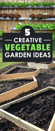 These 5 vegetable garden ideas will help add some spice and aesthetics to your garden, as well as ensure huge, bountiful harvests for the season!