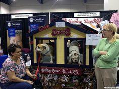 2013 Vegas Pet Expo.