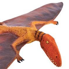This Dimorphodon toy is the perfect addition to your aspiring paleontologist's dinosaur collection. Spinosaurus, Tyrannosaurus Rex, Ice Age, Prehistoric, Predator, Bats, Fossils, Reptiles, Safari
