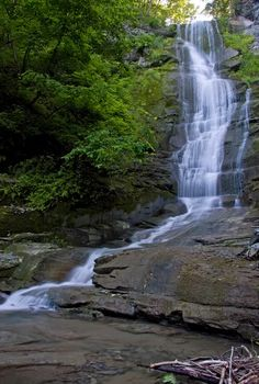 Oak Tree Falls, Seneca County, NY