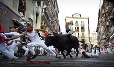 The Pamplona Running of the Bulls is a part of the San Fermin Festival, which runs in Pamplona from July 6 to July 14 in 2012 and every year.