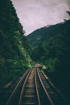 from the story Fotos para portadas y fondos by YederlinM (Yederlin Michelle) with reads. Wallpaper Travel, Nature Wallpaper, Forest Wallpaper Iphone, Train Wallpaper, Landscape Wallpaper, Landscape Photography, Nature Photography, Iphone Photography, Travel Photographie
