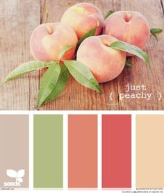 Peach Green Color Palettes