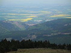 Blick nach Ilsenburg. Dahinter leuchten wunderschön die gelben Rapsfelder, derweil auf dem Brocken alles noch grau ist...