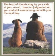 13 Best Friends images | Friendship, Baby dogs, Cutest animals